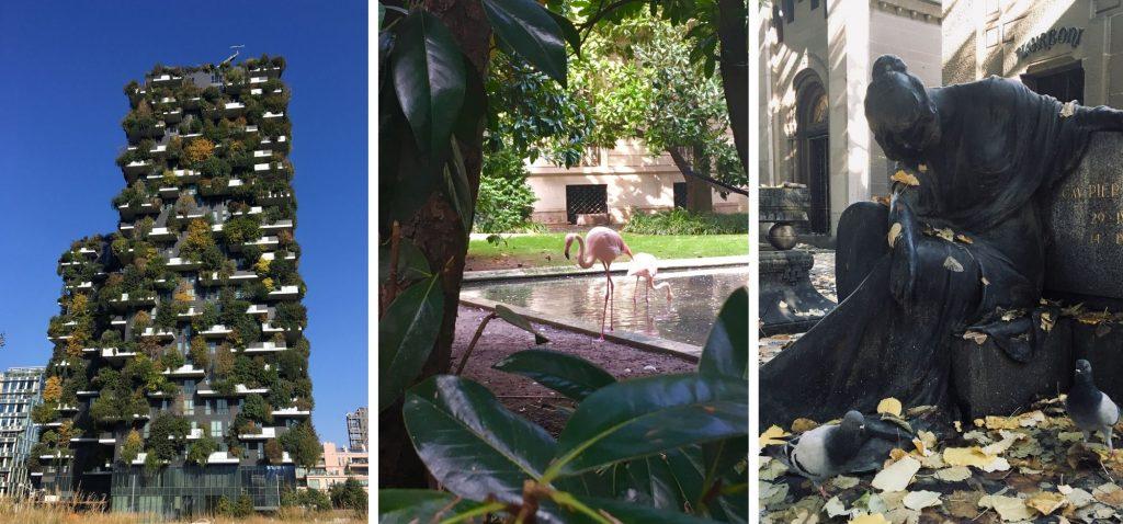 Mediolan - Bosco Verticale / Flamingi / Cimitero Monumentale