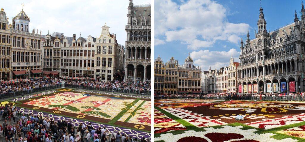 Kwiatowy dywan na Grand Place w Brukseli